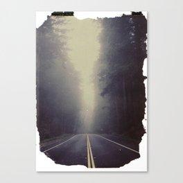 Long Road, Redwoods National Park. Instant Film Canvas Print