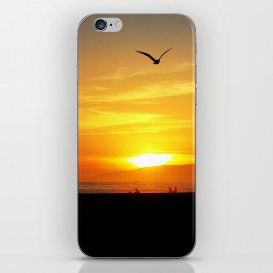 Venice Beach Flying Through the Sunset iPhone & iPod Skin