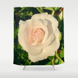 Lighten Shower Curtain