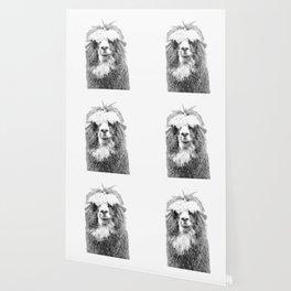 Black and White Alpaca Wallpaper