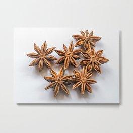 Star Anise Metal Print