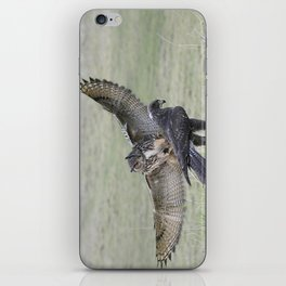 Eagle Owl Attacking Harris Hawk iPhone Skin