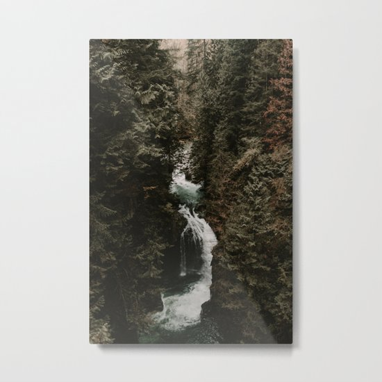 Forest Fall Metal Print