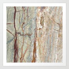 Brown onyx home decor marble texture photo print Art Print