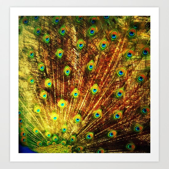 abstract with peacock Art Print