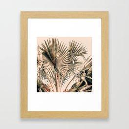 Morning Star Framed Art Print