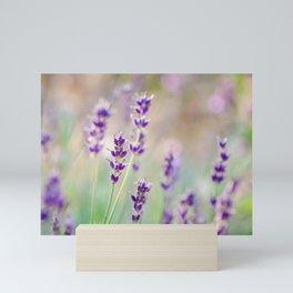 Lavender Daydream Mini Art Print