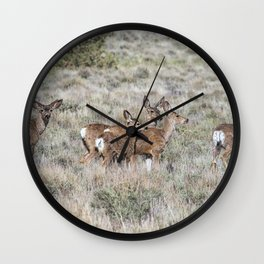 Group of Mule Deer Wall Clock