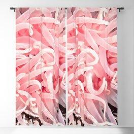 Anemone Flower Blackout Curtain