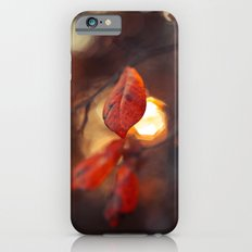 Autumn Light iPhone 6s Slim Case