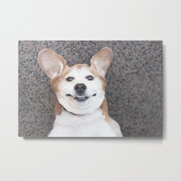 Goofy Dog Metal Print