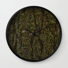 Redwood Forest XV Wall Clock