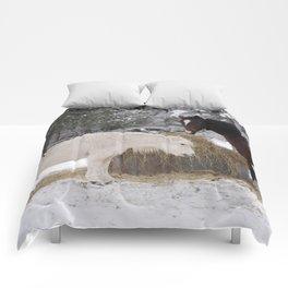 15 Comforters