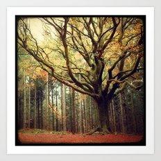 Hêtre de Ponthus 02 - Legendary Trees of Brocéliande Art Print