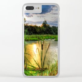 Sunset Over the Marsh Clear iPhone Case