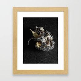 Silver Fruit 4 Framed Art Print