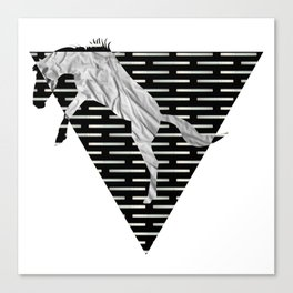 year of the horse: part 4 Canvas Print