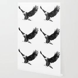 Soaring Eagle Wallpaper