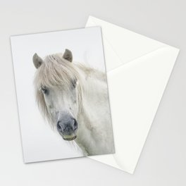 Horse eyes look at you Stationery Cards