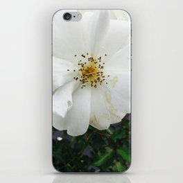 Nothing's perfect iPhone Skin