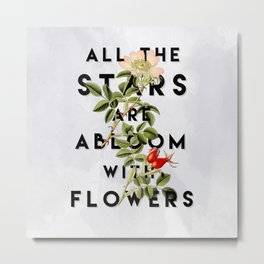 All the Stars Metal Print