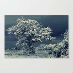 Infra Tree Canvas Print