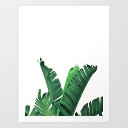 Tropical vibes #9 Art Print