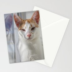 Wink Stationery Cards