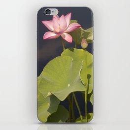 Pink Lotus by Teresa Thompson iPhone Skin