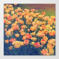 tulips Canvas Prints featuring Tulips  by Juliana RW