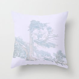 Ancient Tree in wind, snow, and fog on Windy Ridge, Colorado Throw Pillow