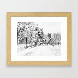 New York City Winter Trees in Snow Framed Art Print
