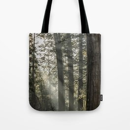 Sunbeams Tote Bag