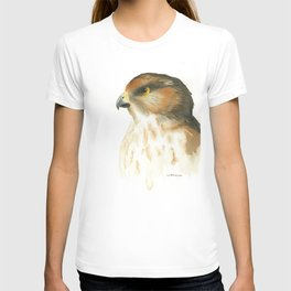 juvenile red-tailed hawk T-shirt