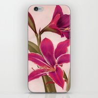 vintage floral iPhone & iPod Skins featuring Vintage Floral by 83 Oranges™