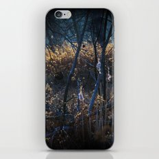 Swampy Field Forest iPhone & iPod Skin