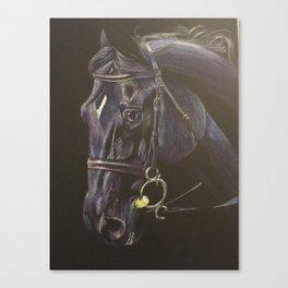 Black Horse Portrait Canvas Print