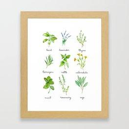 9 herbs watercolor Framed Art Print