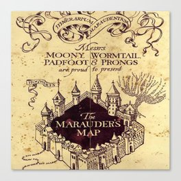 bown map Canvas Print