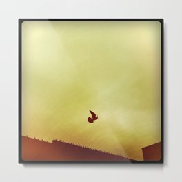 of a feather Metal Print