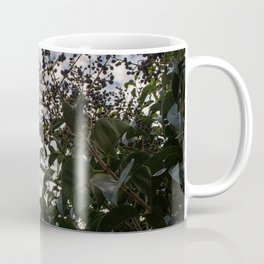 Elderberry, sky is the limit Coffee Mug