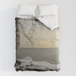 Curves of the Silver Birch by Teresa Thompson Comforters