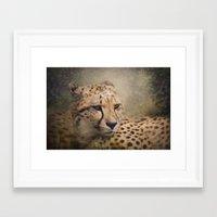 cheetah Framed Art Prints featuring Cheetah  by Pauline Fowler ( Polly470 )