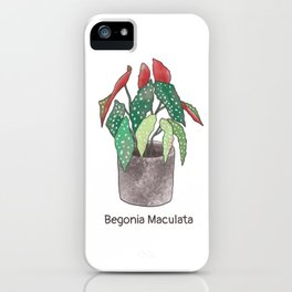 Begonia Maculata with Title iPhone Case