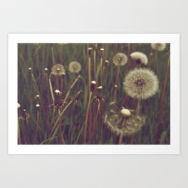 Make a Wish. Art Print