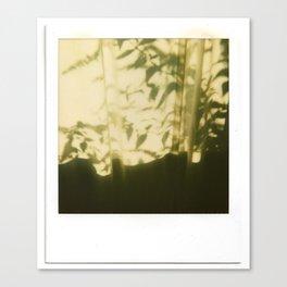 Plant Shadows Canvas Print