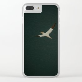 Wings stretched wide Clear iPhone Case