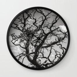 Ancient Tree, Survivor, Alive Wall Clock