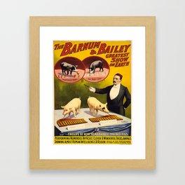 Vintage poster - Trained pigs Framed Art Print