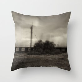 Dungeness Residence Throw Pillow